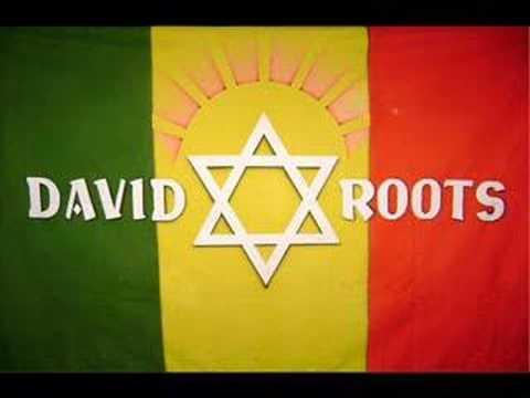 David Roots - SOS Natureza