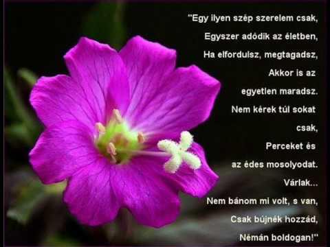 szerelmes idézetek fiúknak rövid Szerelmes idézetek+képek   YouTube szerelmes idézetek fiúknak rövid