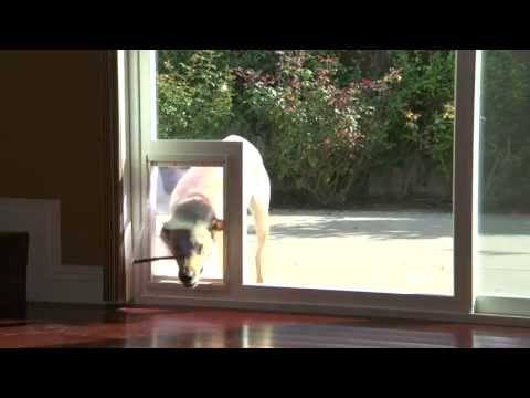 DanJo Patio Sliding Door With Built-in Pet Access