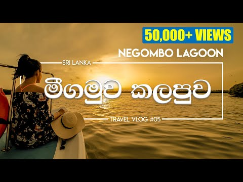 Negombo Lagoon | One Day Trip | VLOG#5
