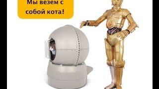 """Выставка """"Кошки в космосе II"""" Екатеринбург 12-13 апреля 2014"""