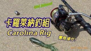 【LH2】路亞軟餌-卡羅萊納釣組 實釣(Carolina Rig Fishing)