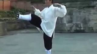 Wudang Zhang San Feng Taiji 28 by Master Li Yuan Fei of Wudang Kungfu Academy