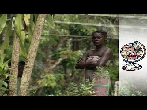The Battle for Suriname's Rainforest