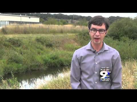Pesticides Found in Amazon Creek