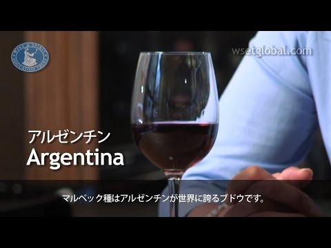 wine article WSET 3 Minute Wine School  Argentina presented by Jancis Robinson MW  Japanese subtitles