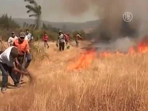 Пожары в Чили уничтожили школу (новости)