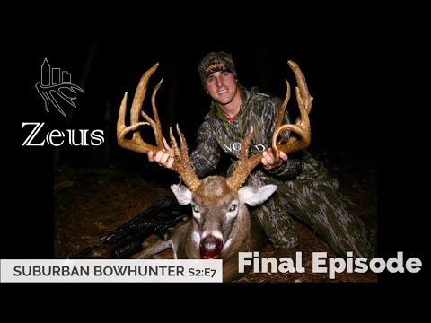 Suburban Bowhunter | Zeus: part 4