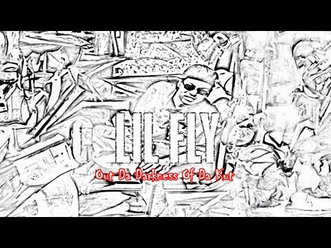 Lil Fly - Funkytown's In My Brain (Instrumental by DJ Mingist)
