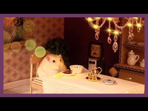 [ENG Sub] Hamster Restaurant