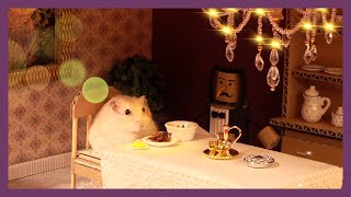 햄스터 레스토랑 (Hamster Restaurant)