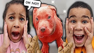 OUR PUPPY TURNED RED!! FamousTubeKIDS