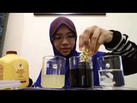 Aloe Vera Gel Forever Living Product Analogy / demo by an najah