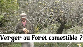 Forêt comestible ou verger ? (et Chop and Drop)