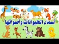 أسماء الحيوانات بالانجليزية مع أصواتها   جميل جدا ومسلي للأطفال