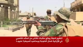 قتلى للجيش العراقي والحشد شمال الفلوجة