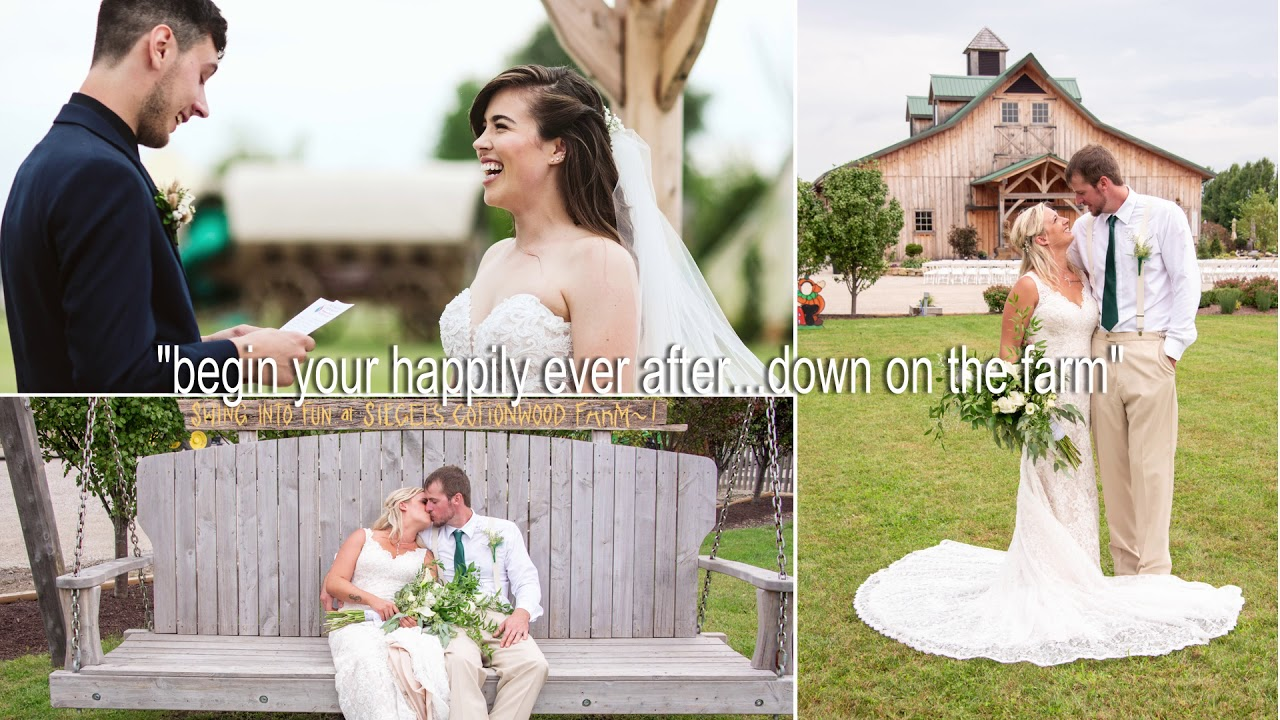 Rustic Barn Wedding Venue Chicago The Barn At Cottonwood