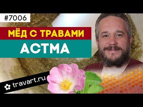 Мед с травами. Профилактика Астмы. ТРАВАРТ  7006 Животворец Андрей Протопопов