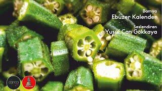 Ebuzer Kalender - Bamya ( Sesli Öykü)