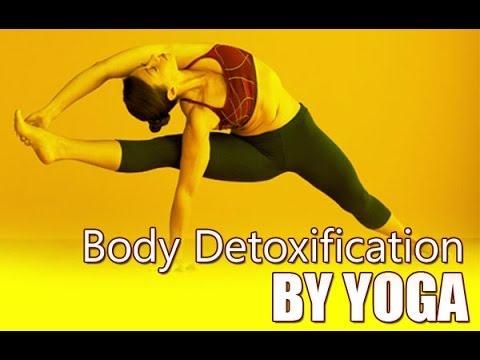 full body detoxification8 yoga poses  detoxification