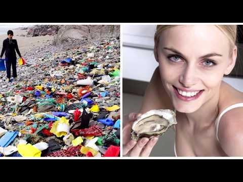 Как влияет пластик на здоровье человека