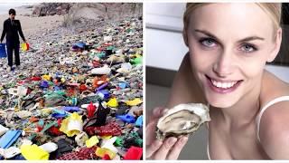 Сколько Пластика Попадает в Организм Людей и Животных? В Каких Неожиданных Продуктах Опасный Пластик