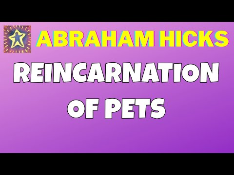 Abraham Hicks • Reincarnation of pets • Master Law of Attraction