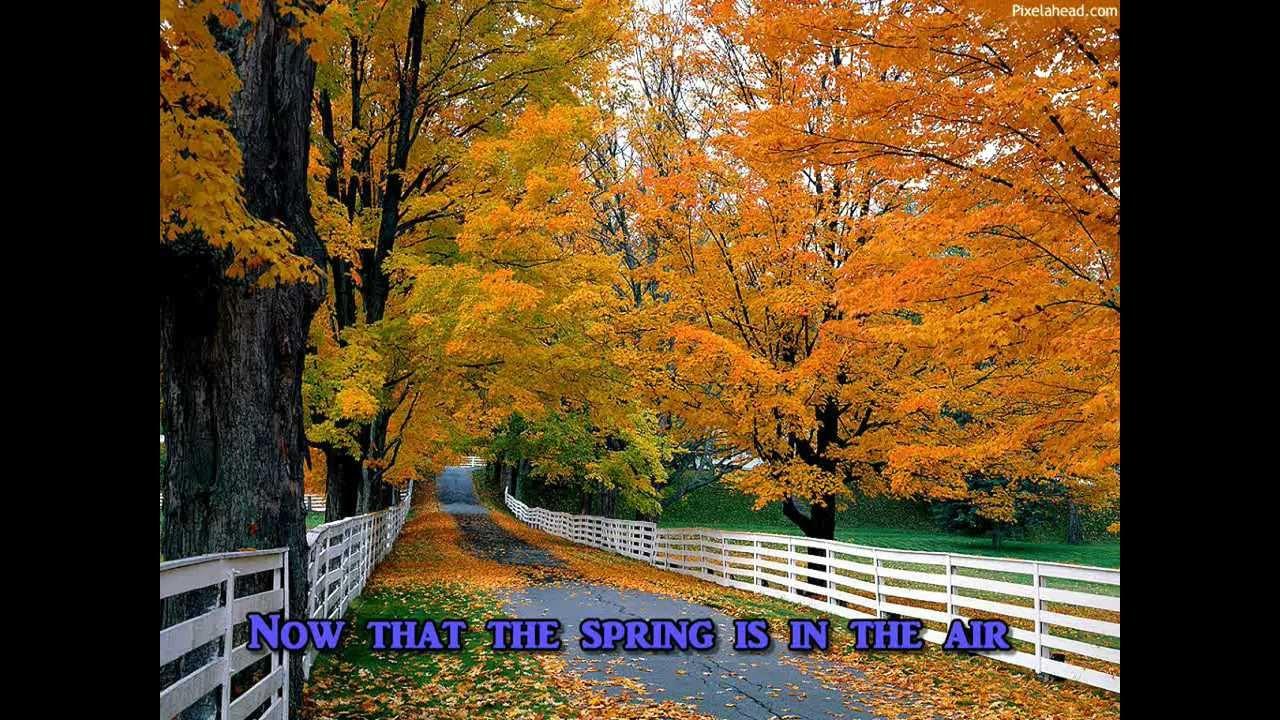 seasons in the sun deutsch
