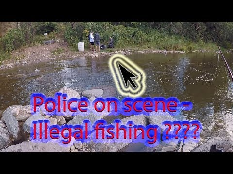 Bronte Salmon Fishing - Something Illegal
