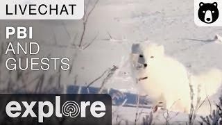 Polar Bears International and Guests - Live Chat thumbnail