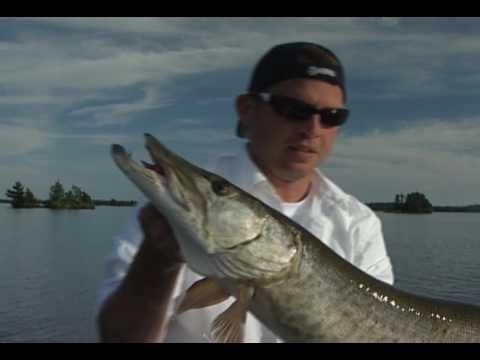 Bob Mehsikomer and Jason Holt Attack Shoal Lake