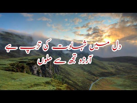 dil-main-shahadat-ki-tarrap---beautiful-urdu-trana-lyrics