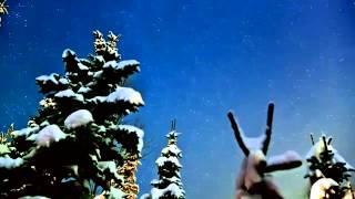 столбчатый фундамент своими руками(Рос сваи предлагает строительство фундамента на винтовых сваях. Это проверенная временем технология имеет..., 2013-05-27T11:41:06.000Z)