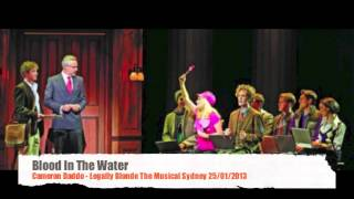 Blood In The Water - Cameron Daddo Legally Blonde Sydney 25/1/2013