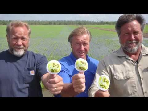 Soil Health On Rice In Southwest Louisiana With The Durand Brothers