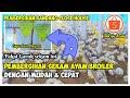 Tips Pembersihan Sekam Ayam Broiler Dengan Mudah Di Kandang Close House Broiler  Mp3 - Mp4 Download