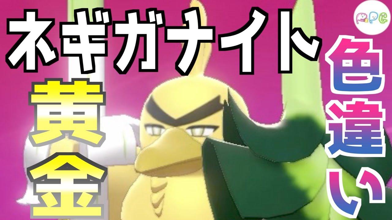 【ポケモン剣盾#色違い】金のネギガナイト出してみた【国際孵化マラソン】
