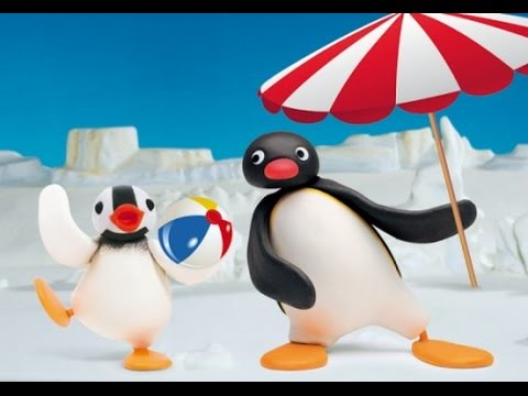 Pingu Cartoon For Kids Youtube