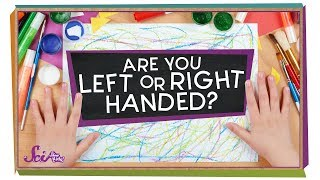 Which Hand Is Stronger  Biology for Kids