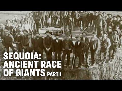 Sequoia -- Ancient Race of Giants -- Part 1