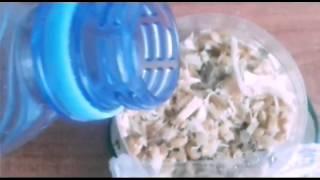 Как вырастить овес | для грызунов и тд | подробное видео.