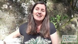 Quais nutrientes as plantas precisam?