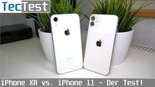 iPhone XR vs. iPhone 11 - Der Vergleichstest! Welches iPhone lohnt sich mehr? | TecTest | 4K50p