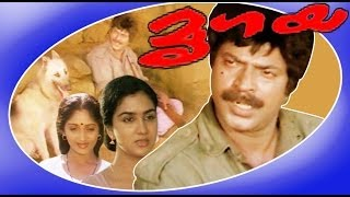 Mrigaya | Superhit Malayalam Full Movie | Mammootty & Sunitha