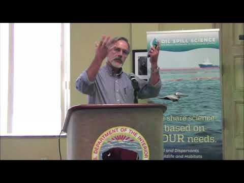 Tom Coolbaugh, Subsea Dispersant Injection Overview