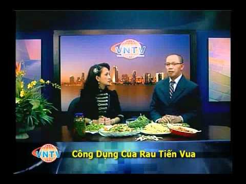 VNTV - Công Dụng Của Rau Tiến Vua - Cải Cung Đình trong đông Y