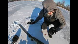 last time ice fishing this year caught a few nice pike