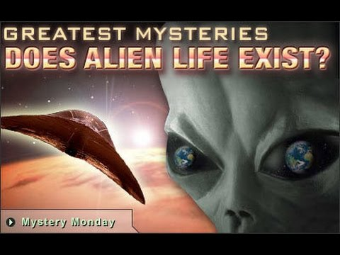 aliens exist Watch video this astonishing image is the long-awaited proof that alien life does exist, scientists have sensationally claimed.