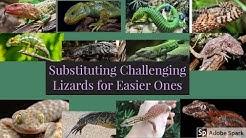 Easier Alternatives to Challenging Lizards