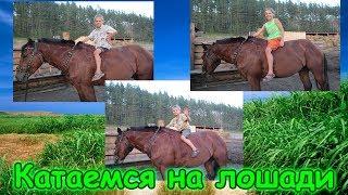 Катаемся на лошади, смотрим овец, хрюшек и т.д. (08.17г.) Семья Бровченко.